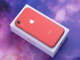 苹果iPhone XR(64GB)整体外观第5张图