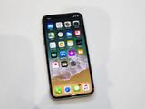 银色苹果iPhone X(64GB)第24张图